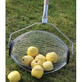 Ramasseuse pommes et poires