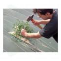 Outil de pose pour clous polypro ou biodégradables