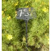 Etiquettes à planter pour craie ou marqueur blanc