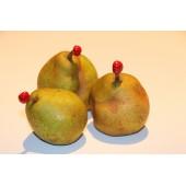 Cire pour conservation des fruits