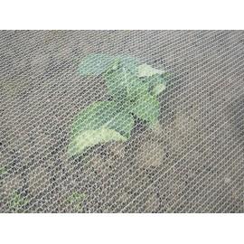 Filet Anti-Insectes Climatex (croissance – protection)