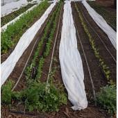 Irrigation localisée par suintement PORITEX